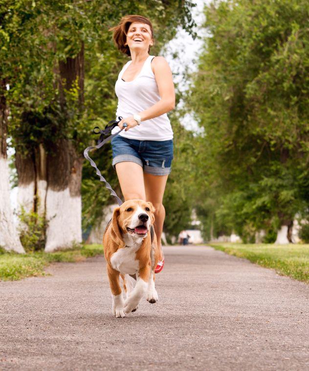 Egy póráz, és indulhat a kutyasétáltatás a jó időben!