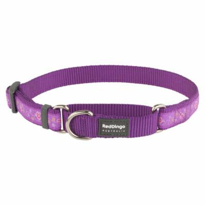 Red Dingo Butterfly Purple Small Martingale nyakörv