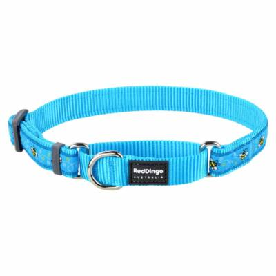 Red Dingo Bumble Bee Turquoise Large Martingale nyakörv