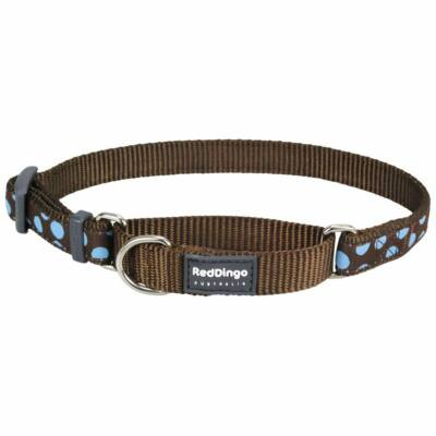 Red Dingo Blue Spots Brown Medium Martingale nyakörv