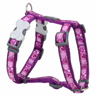 Red Dingo Breezy Love Purple XLarge Dog hám